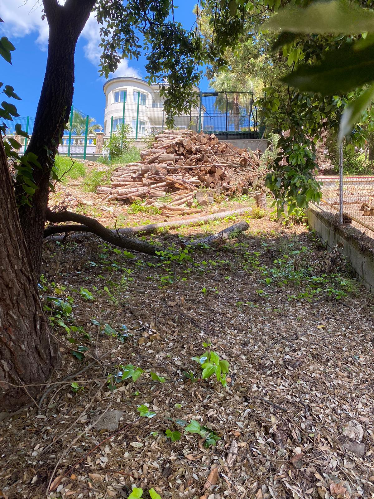 Desbroce y limpieza de terrenos para la construcción y el diseño del paisaje